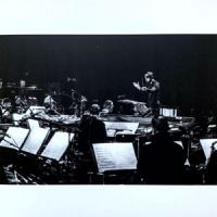 JAMESZOO &<wbr> METROPOLE ORKEST <wbr>(CONDUCTED BY JULES BUCKLEY) - Melkweg : BRAINFEEDER <wbr>(UK)