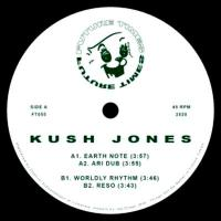 KUSH JONES - S/<wbr>T : FUTURE TIMES <wbr>(US)