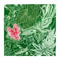 DOUBLE GEOGRAPHY - The Indoor Gardener : LP