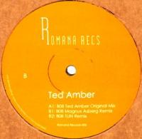 TED AMBER - 808 (Magnus Asberg/TIJN mix) : 12inch