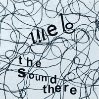 WEB - The Sound There : ACIDO RECORDS (GER)