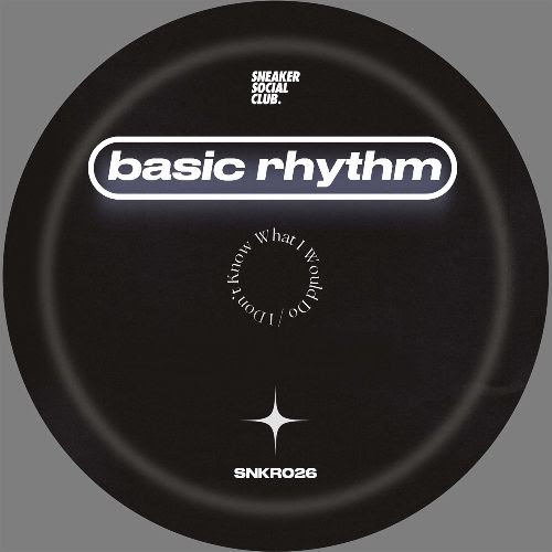 BASIC RHYTHM - I Don't Know What I Would Do : 12inch