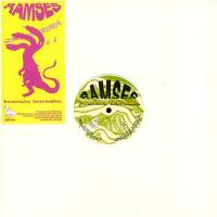 RAMSES - Arancio Borealis : 12inch