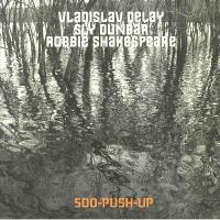 VLADISLAV DELAY Meets SLY & ROBBIE - 500-Push-Up : LP