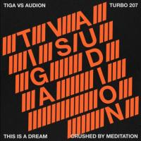 TIGA VS AUDION - This Is A Dream : 12inch