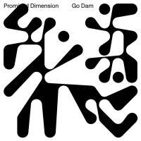 GO DAM - Promised Dimension : 12inch