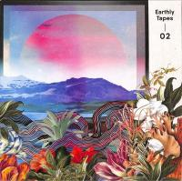 VARIOUS - Earthly Tapes 02 : 12inch