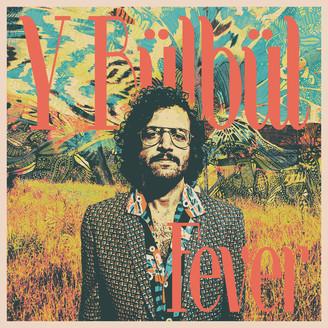 Y BÜLBÜL - Fever : LP