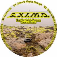 EAMON HARKIN - See You In My Dreams : 12inch