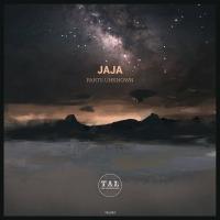 JAJA - Parts Unknown : TAL DER VERWIRRUNG (GER)