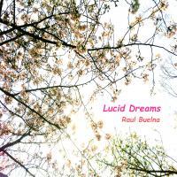 RAUL BUELNA - Lucid Dreams : IMPERFECTION RECORDS (JPN)