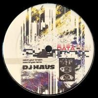 DJ HAUS - Data Remixes : 12inch