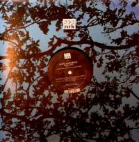 JAMIE ANDERSON - Time Is Now : 12inch