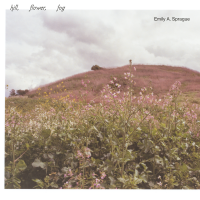 EMILY A. SPRAGUE - Hill, Flower, Fog : CD