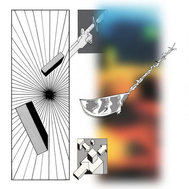 HAF HAF - Pattern In Chaos : GANG OF DUCKS (GER)