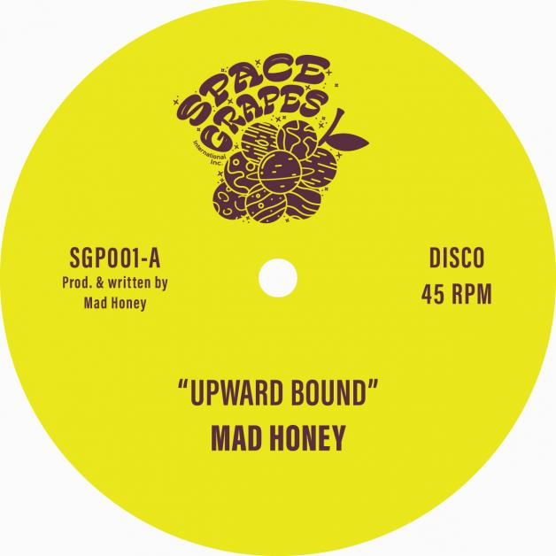 MAD HONEY - Upward Bound / Treasure Every Sunset : 12inch