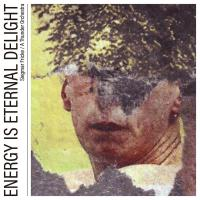 SIEGMAR FRICKE / A THUNDER ORCHESTRA - Energy Is Eternal Delight : LP