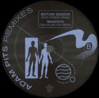 ADAM PITS - International Wafter: The Remixes : 12inch