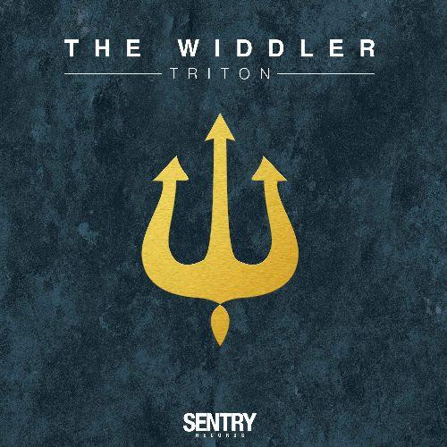 THE WIDDLE - Triton : 2x12inch