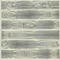 CARCASS IDENTITY - Carcass Identity : LP
