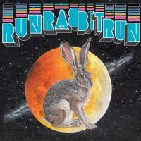 SUFJAN STEVENS / OSSO - Run Rabbit Run : 2LP