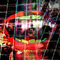 ANIMAL COLLECTIVE - Centipede Hz : 2LP+DVD