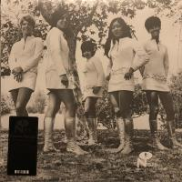 FEMALE SPECIES - Tale Of My Lost Love : NUMERO GROUP (US)