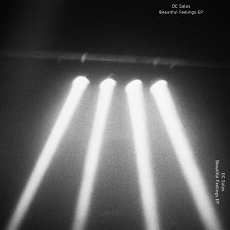 DC SALAS - The Beautiful Feelings EP : 12inch