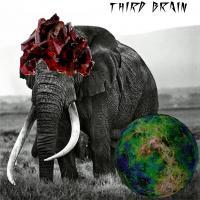 THIRD BRAIN - 「Ushan - Lite Tek」 EP : 7 inch