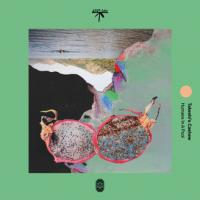 TAKESHI'S CASHEW - Humans In A Pool : LP