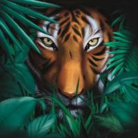 A VISION OF PANORAMA - Unique Tiger : MELLOPHONIA FRANCE (FRA)