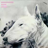 TERRANOVA - Painkiller EP : 12inch