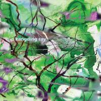 KANGDING RAY - Branches : 12inch