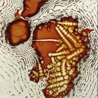 AXEL DÖRNER & RICHARD SCOTT - A Journal of Elasticity : LP (180g)