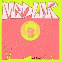 MEDLAR - Aerial : 12inch