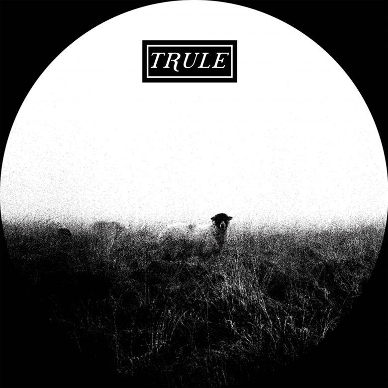 STEF?N DUBS - Spring Tones : TRULE (UK)