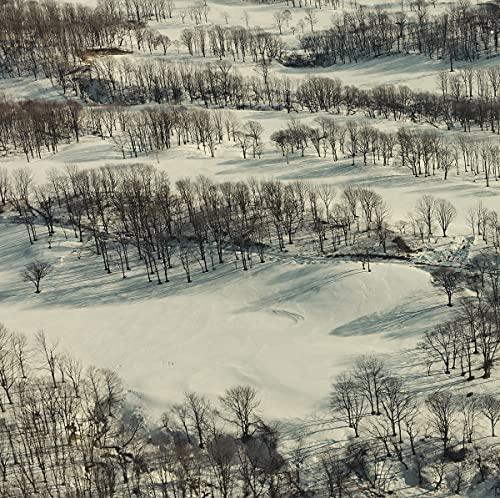 トウヤマタケオ - 四辺は森として : WINDBELL (JPN)