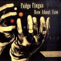 FUDGE FINGAS - Now About How : 2LP