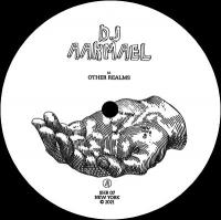 DJ AAKMAEL - Other Realms : SECOND HAND (US)