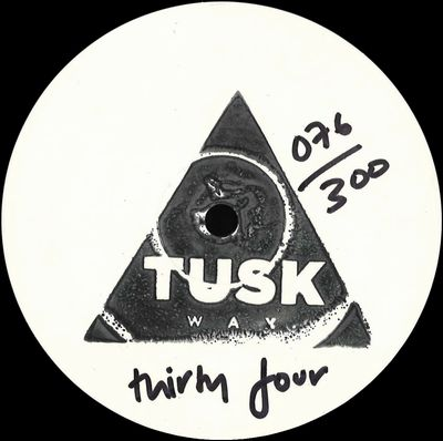 AIMES - Tusk Wax Thirty Four (incl. Coyote Remix) : 12inch