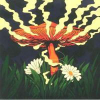 ADAM PITS - A Recurring Nature : 2LP