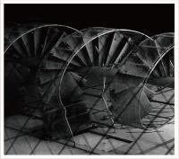 JURI SUZUE - Rotten Miso : CD
