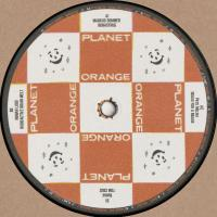 VARIOUS - Plastic Goose EP : 12inch