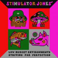 STIMULATOR JONES - Low Budget Environments Striving for Perfection : STONES THROW (US)