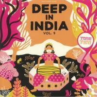 TODH TERI - Deep In India Vol.9 : 12inch