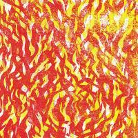 THE BUG - Fire : NINJA TUNE (UK)