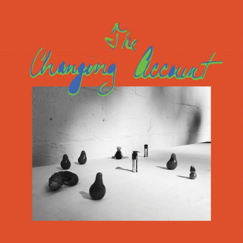 G.S. SCHRAY - The Changing Account : LAST RESORT (UK)
