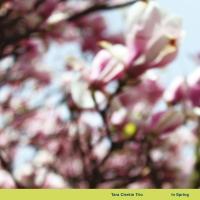 TARA CLERKIN TRIO - In Spring : WORLD OF ECHO (UK)