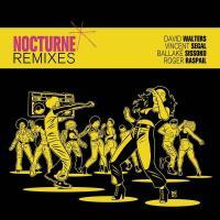 DAVID WALTERS - Nocturne (remixes) : 12inch