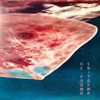 ENITOKWA - Re-Promo : 2x12inch